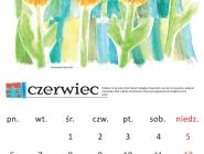 kalendarz-2016-tg